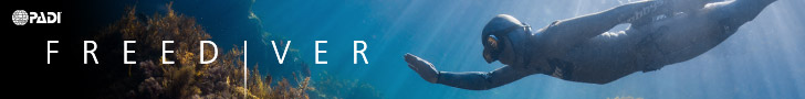 Learn to Freedive PADI Freediver courses in Melbourne, Victoria with WaterMaarq Freediving