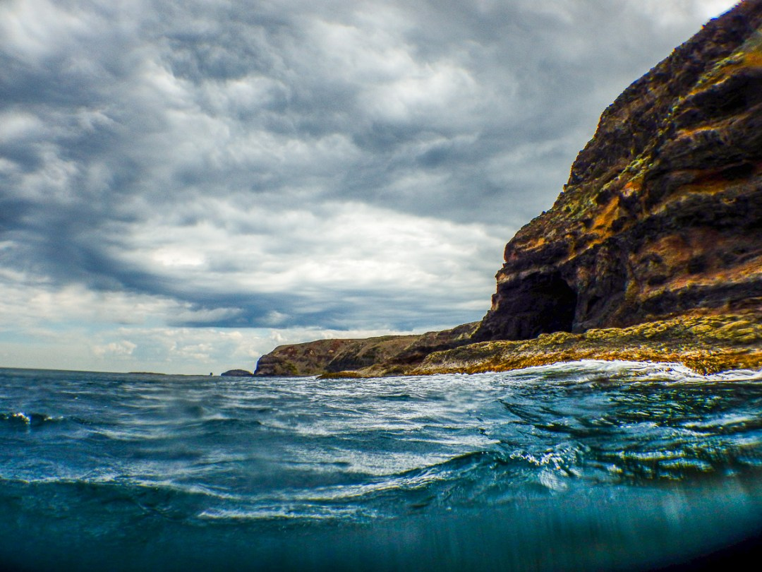 Scenic Whale Sightings Eco Boat tour from Flinders on the Mornington Peninsula