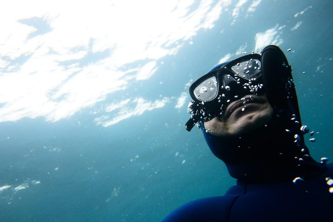 Fun freediving in Port Phillip Bay with WaterMaarq