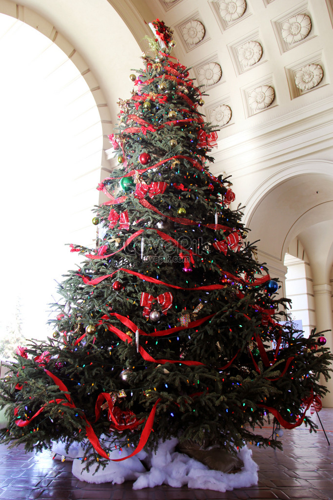 Christmas tree in pasadena city hall photo image_picture free