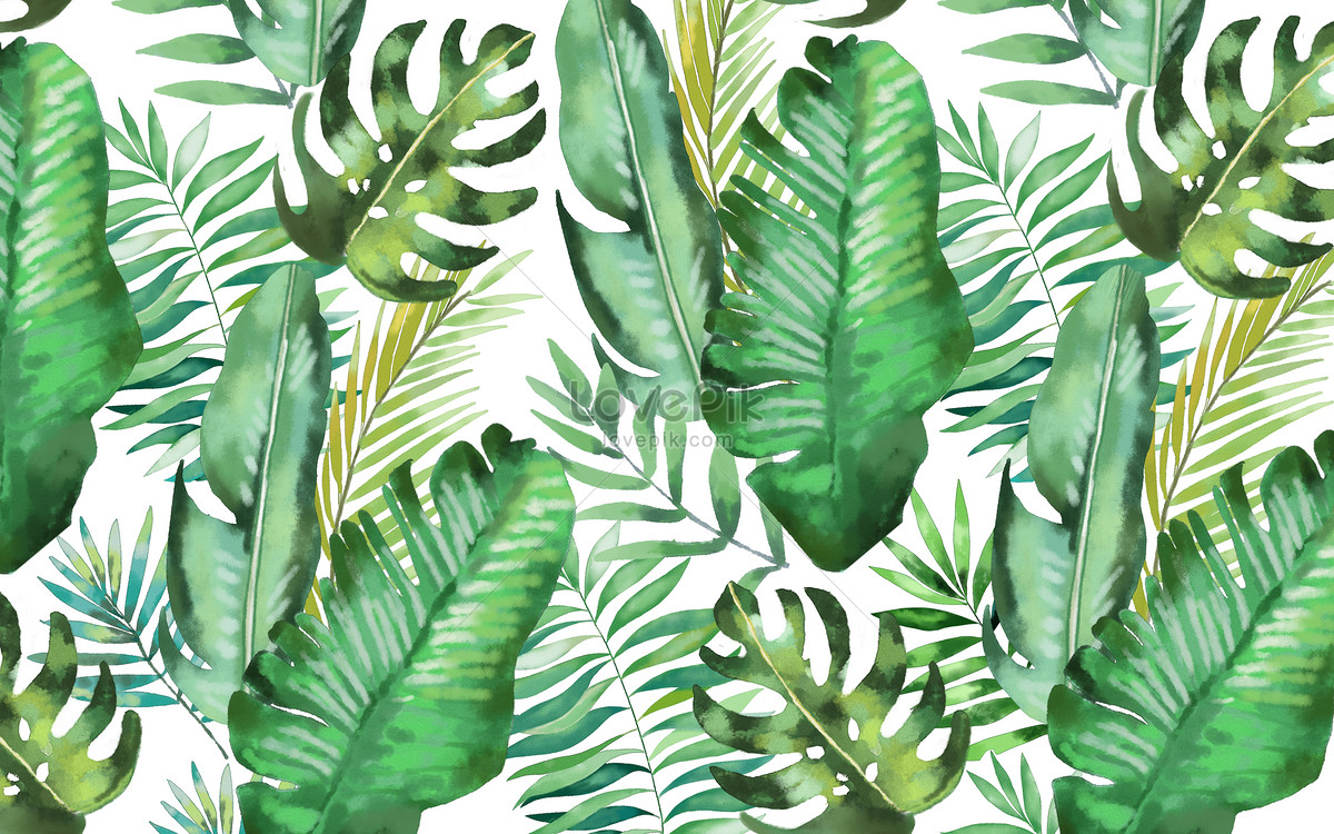 Abstract Vector Wallpaper Hd Watercolor Background Of Tropical Leaves Photo Image