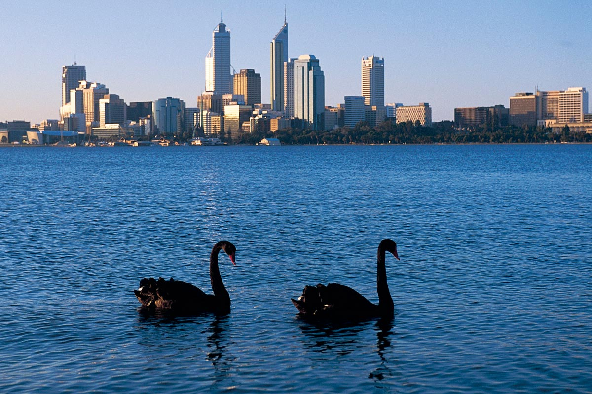 Perth What's On Today Opinions On Swan River Western Australia