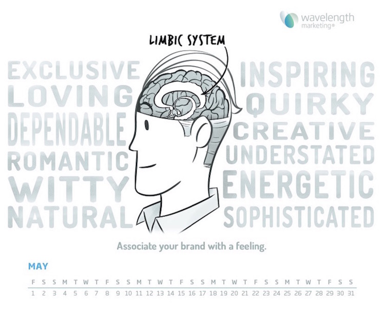 build a brand that connects with the limbic system