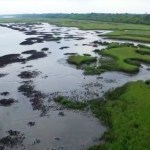 Oyster Beds EPIC research