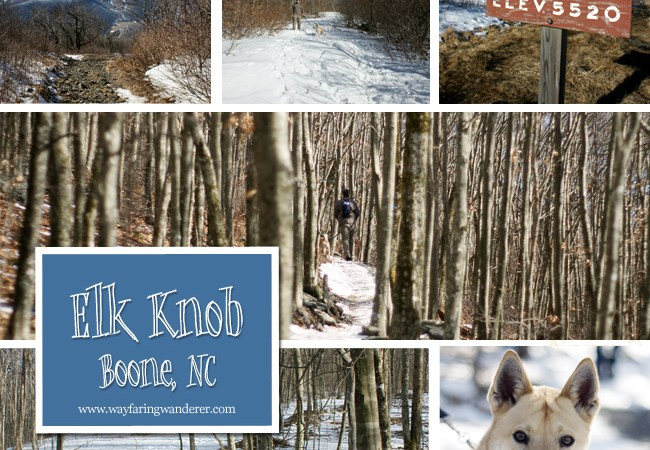 My Quest to Conquer Elk Knob | Boone, NC