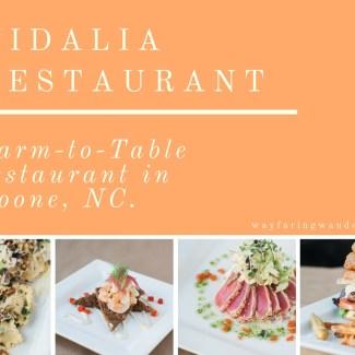 Vidalia-Restaurant-Boone-NC