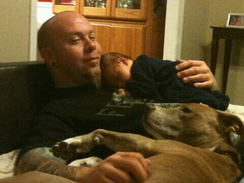 A man who loves pit bulls (1/3)