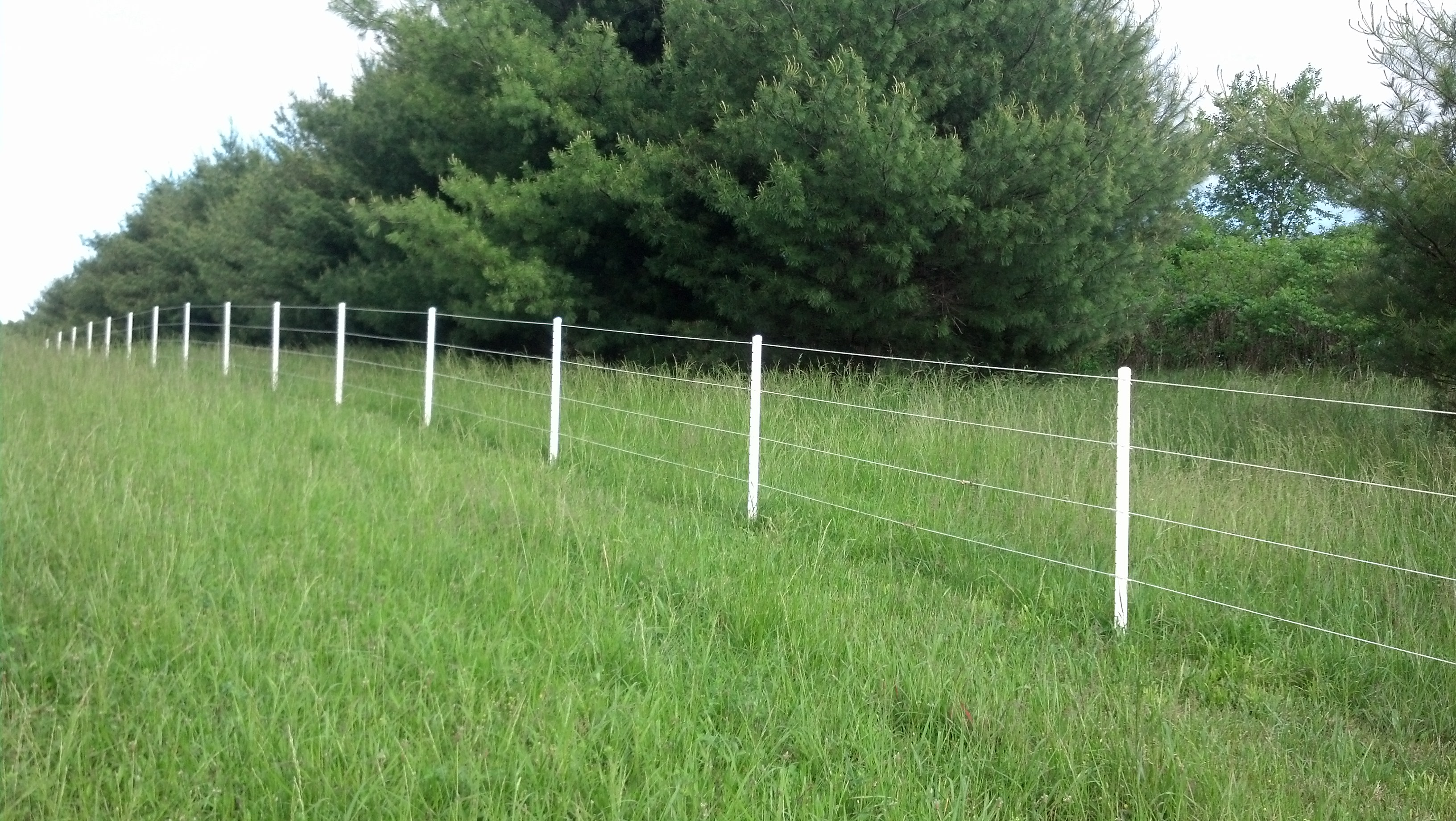 Wire Fencing Electric Fence And Wire Fence W Bar Y Fence Company