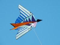 kite-776199_960_720