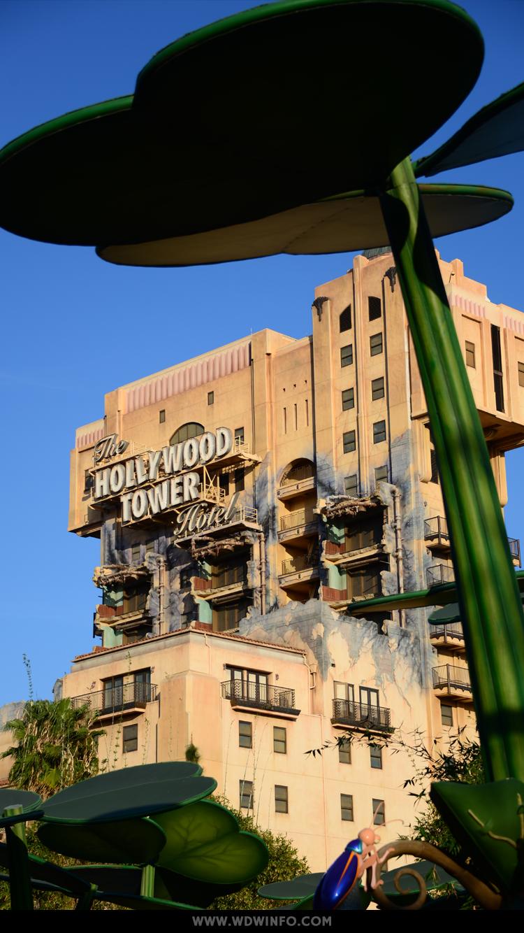 Universal Animal Wallpaper Walt Disney World Wallpapers