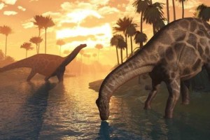 Age of Wonder: Mistaken ideas about Darwinism