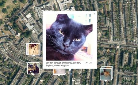 cat_lives_00