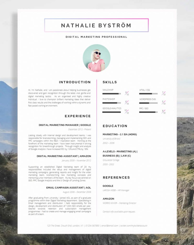 cv professional experience examples