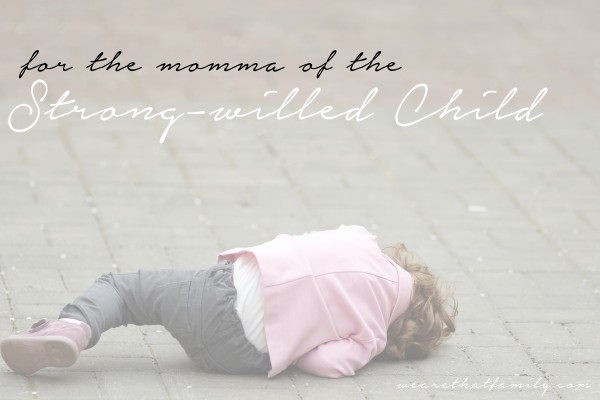 for-the-momma-of-the-strong-willed-child-600x400