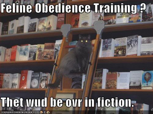 funny-pictures-librarian-cat-tells-