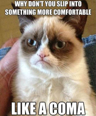best-funniest-grumpy-cat-1