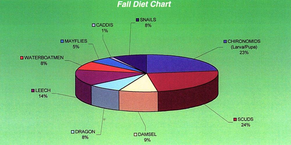 Fall Diet Chart for Trout - http\/\/webflycraftangling Fly - diet chart