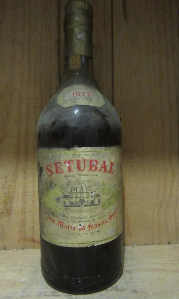 Moscatel Setubal JMF 1977 _1