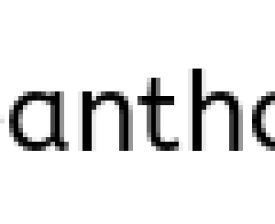 travelify wordpress theme