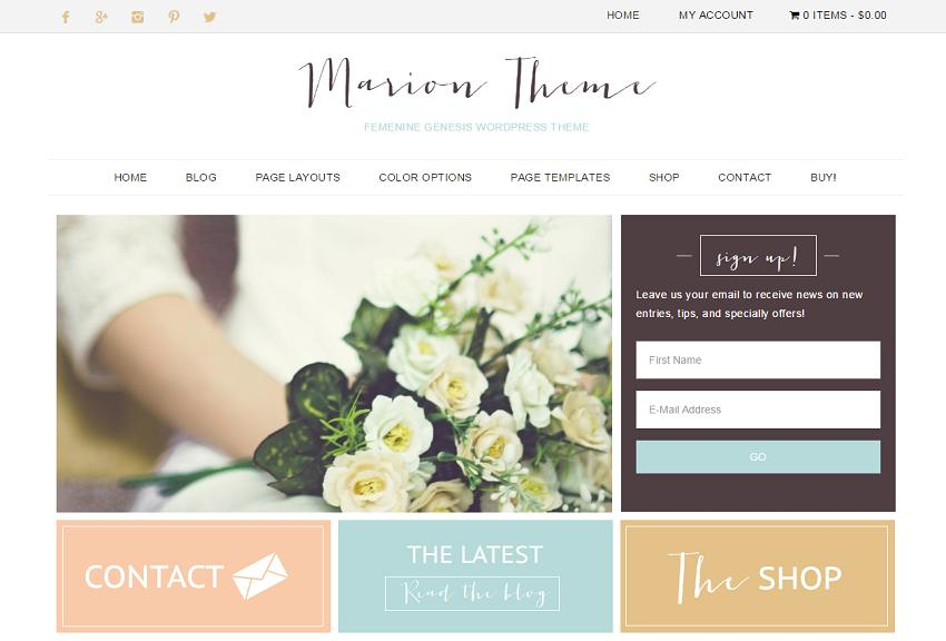 30+ Best Simple WordPress Themes of 2018 (UPDATED) - catering menu template free