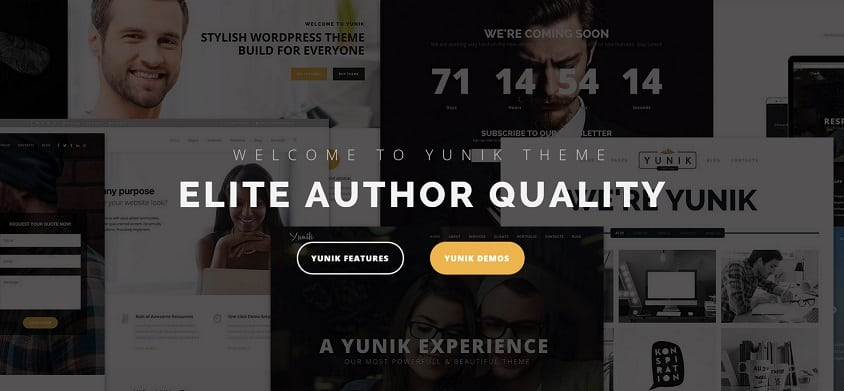 30+ Best Simple WordPress Themes of 2018 (UPDATED) - wordpress resume themes