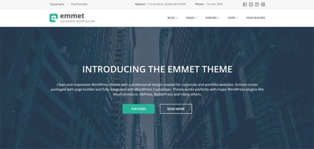 Emmet- one of 20 free wordpress themes for business consultants