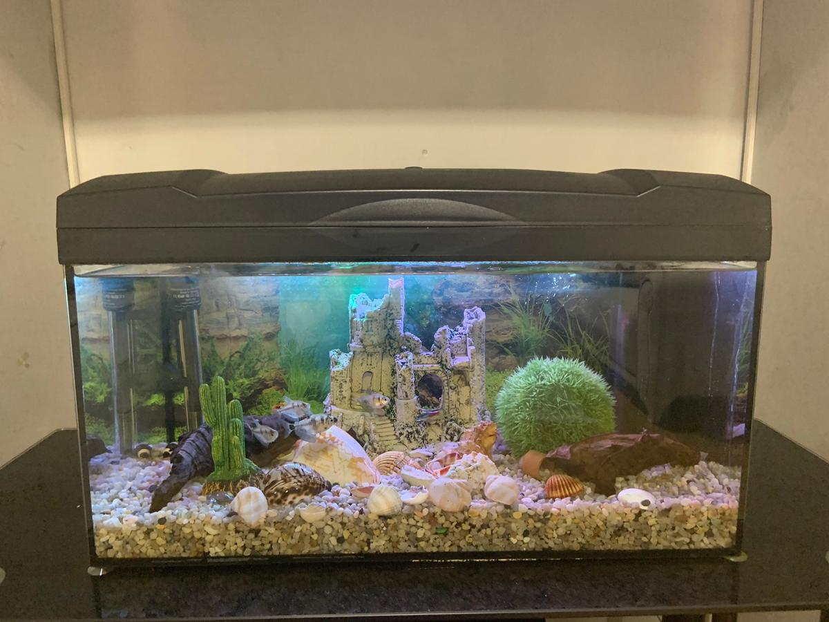 Led Glastisch Aquarim Komplettset