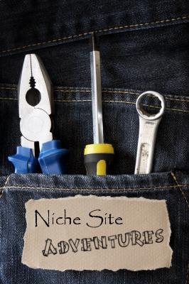 Niche Site Strategic Setup!