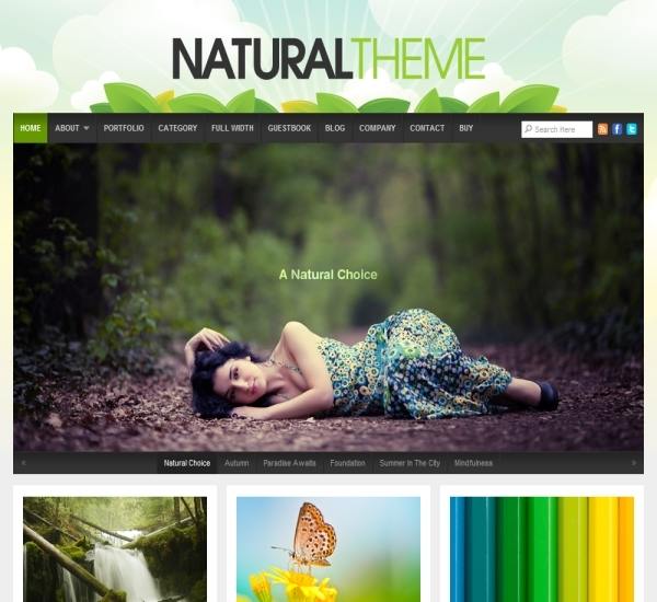 Organic Themes Natural Theme Review