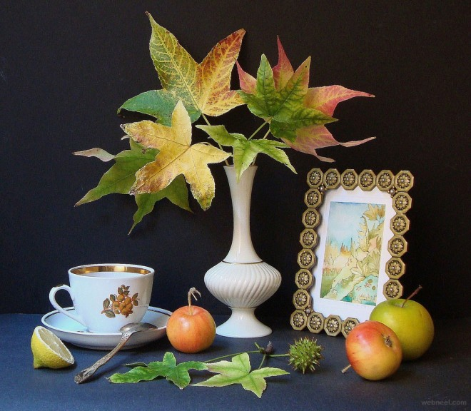 3d Moving Animation Wallpaper Download 25 Beautiful Still Life Photography Examples And Tips For