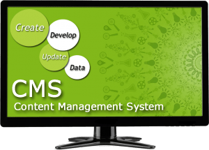 websailer web design programming what is a content management system
