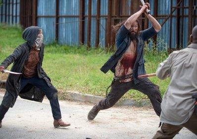 Black Bearded Wolf The Walking Dead 2