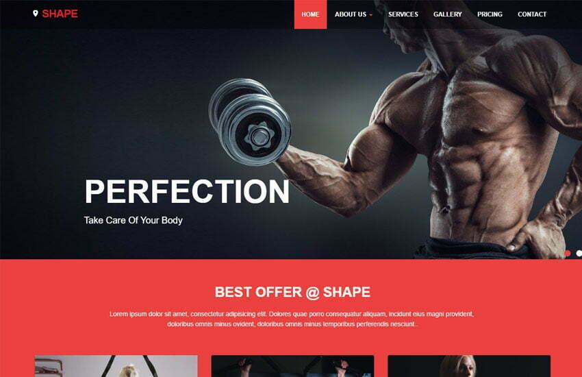 Shape Free Fitness Website Template - WebThemez