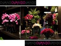Exotic floral design window displays to inspire your ...