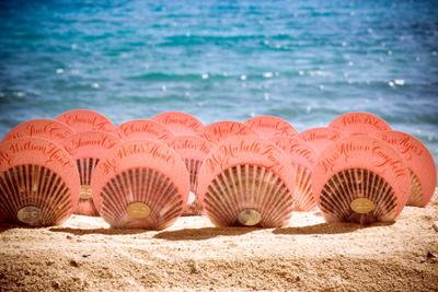 Michelle Rago Seashell escort cards