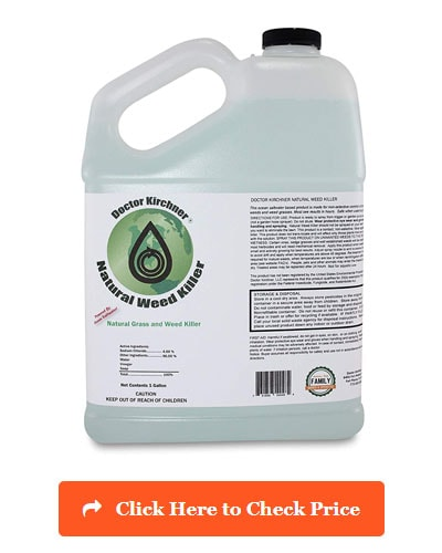 5 Best Weed Killer For Flower Beds Reviewed And Rated In 2019