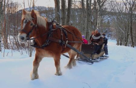 Skjermbilde 2019-01-29 kl. 10.38.42