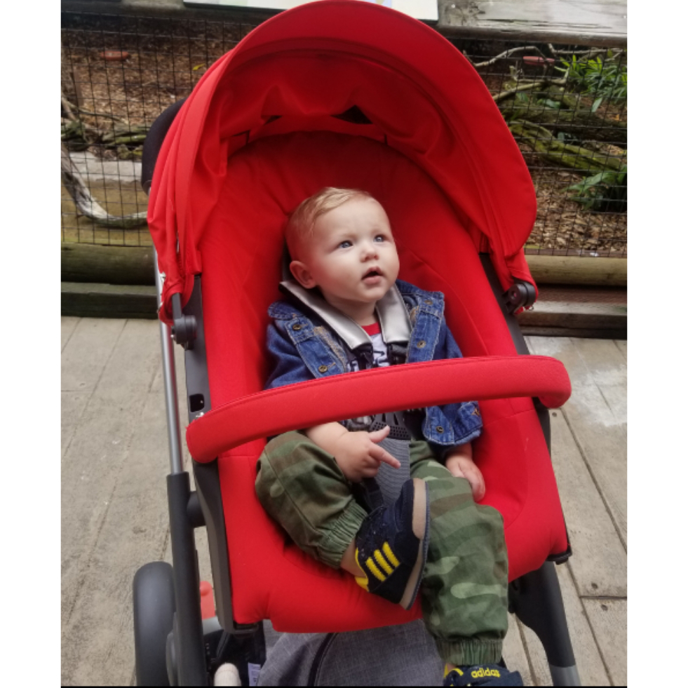 Babyone Bugaboo Cameleon Bugaboo Cameleon Stroller All Generations Reviews Best