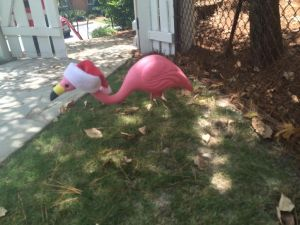 flamingo wearing santa hat