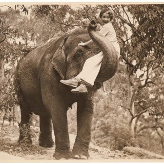 Hollywood star Helen Twelvetrees riding an elephant