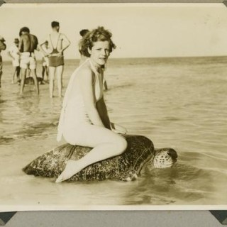 The controversial 1930s sport of Turtle riding