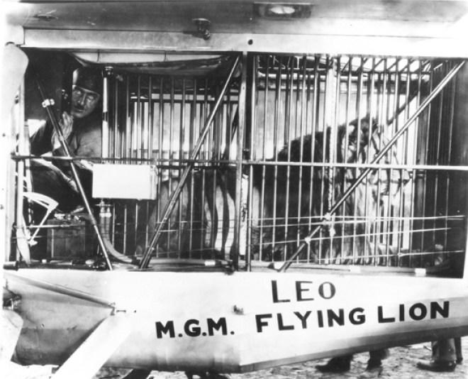 Leo the MGM Lion's plane crash