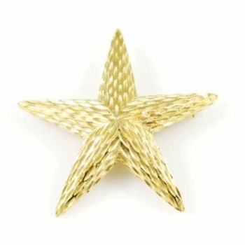 Win a Vintage 1960s Star Brooch