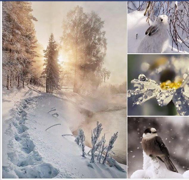 3d Christmas Wallpaper Backgrounds 2015 Winter Weihnachtsgrussbilder