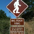 Pikes_peak_highway_big_foot