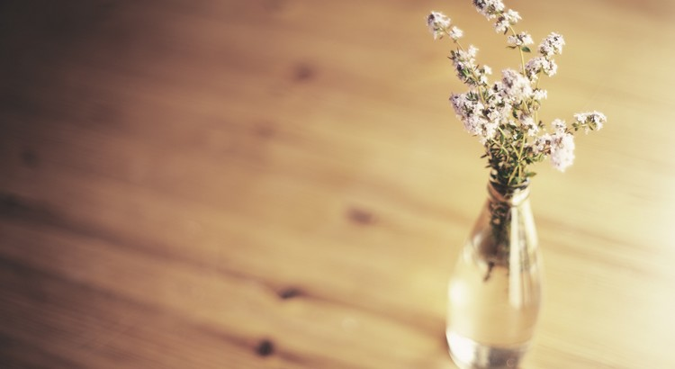 Menschen schenken einander Blumen, weil Blumen den wahren Sinn der Liebe in sich tragen. Wer versucht, eine Blume zu besitzen, wird ihre Schönheit verwelken sehen. Aber wer nur eine Blume auf einem Feld anschaut, wird sie immer behalten. Denn sie passt zum Abend, zum Sonnenuntergang, zum Geruch nach feuchter Erde und zu den Wolken am Horizont. - Zitat von Paulo Coelho
