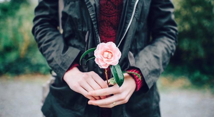 """Es ist verrückt, alle Rosen zu hassen, nur weil dich eine gestochen hat, oder auf alle Träume zu verzichten, nur weil sich einer nicht erfüllt hat. - Antoine de Saint-Exupéry / """"Der kleine Prinz"""""""