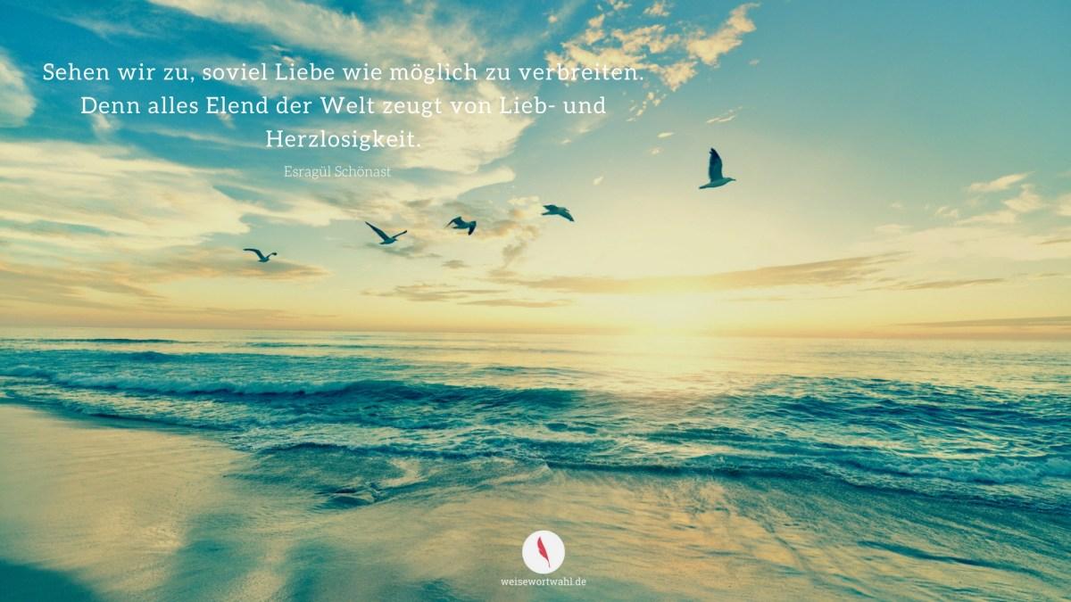 Hintergrundbild für den Desktop oder das Tablet mit einem schönen Spruch über Frieden auf Erden.
