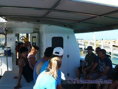 coralbayboat