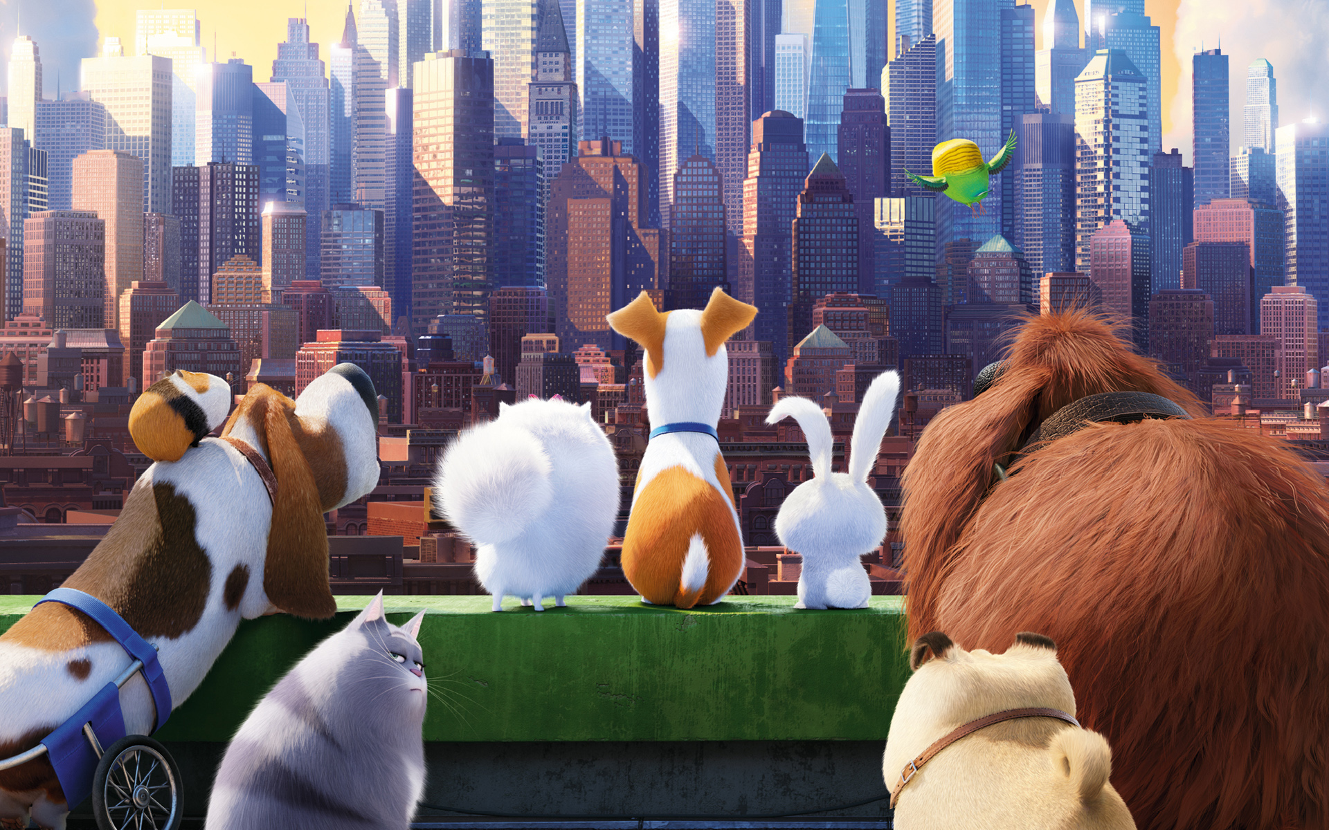 Cute New York Desktop Wallpaper Review The Secret Life Of Pets Is The Pick Of The Liter